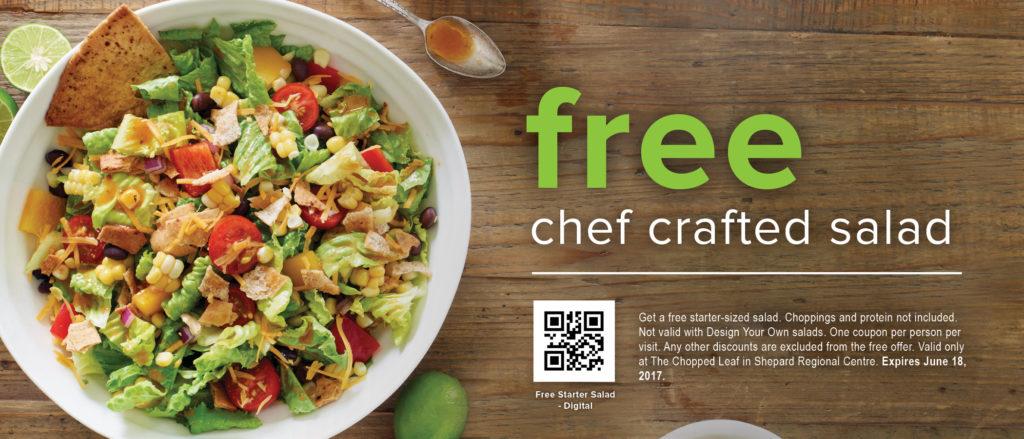 Shepard Regional Centre starter sized salad